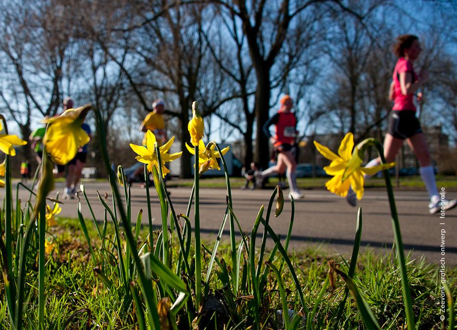 Foto van deelnemers aan de Haagse City-Pier-City Loop, die langs de eerste narcissen rennen.
