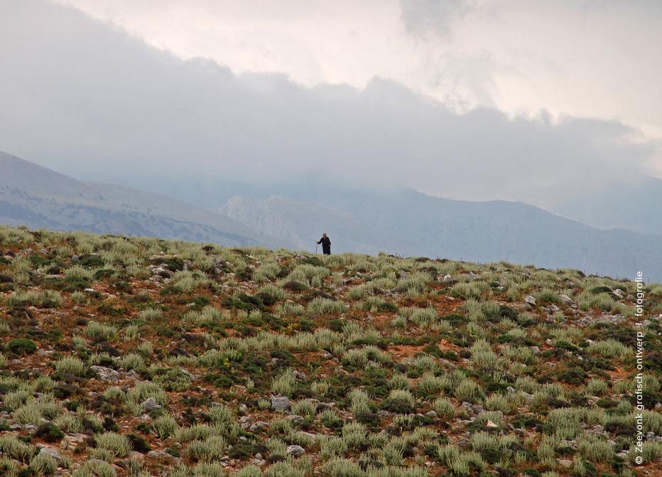 Foto van schaapsherder op een berghelling boven Loutro, Kreta.