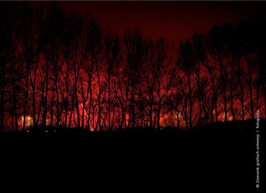 Foto van vuurwerk door de bomen heen, bij Den Burg, op Texel.