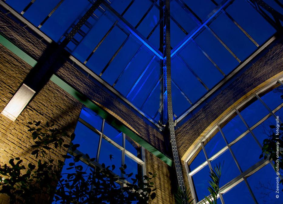 Foto van de sprookjesachtige blauwe verlichting van de Hortus in Amsterdam.